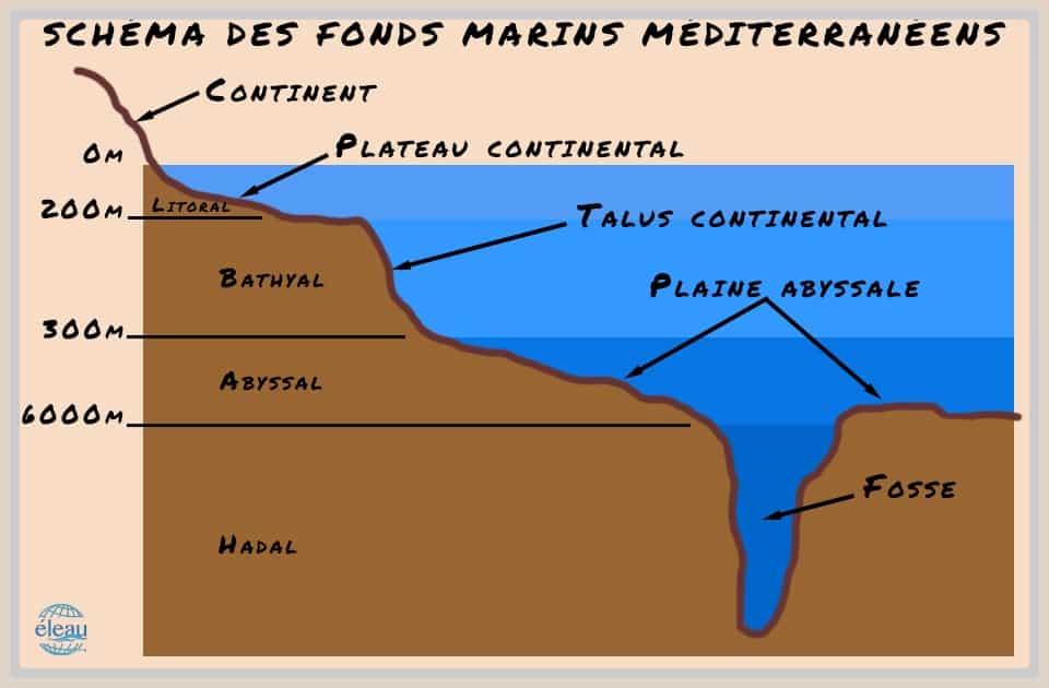 Schema des fonds marins de Méditerranée